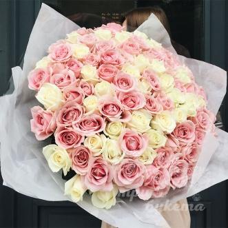 101-rozovaya-i-belaya-roza-premium