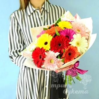raznocvetnye-gerbery